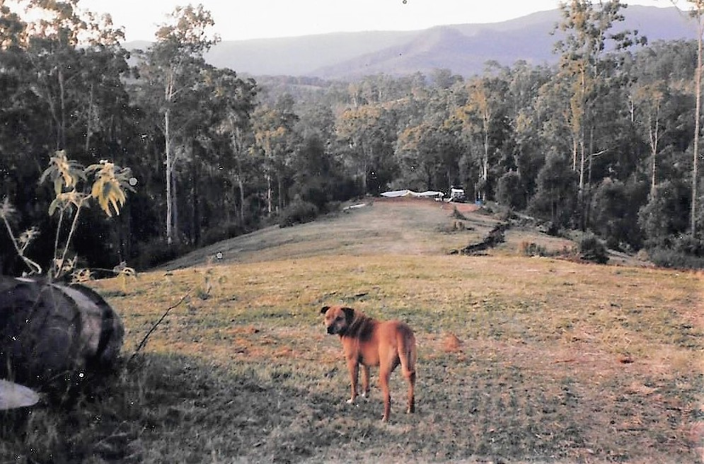 View from the road in 1992 showing tent site in distance (now the site of the cottages)