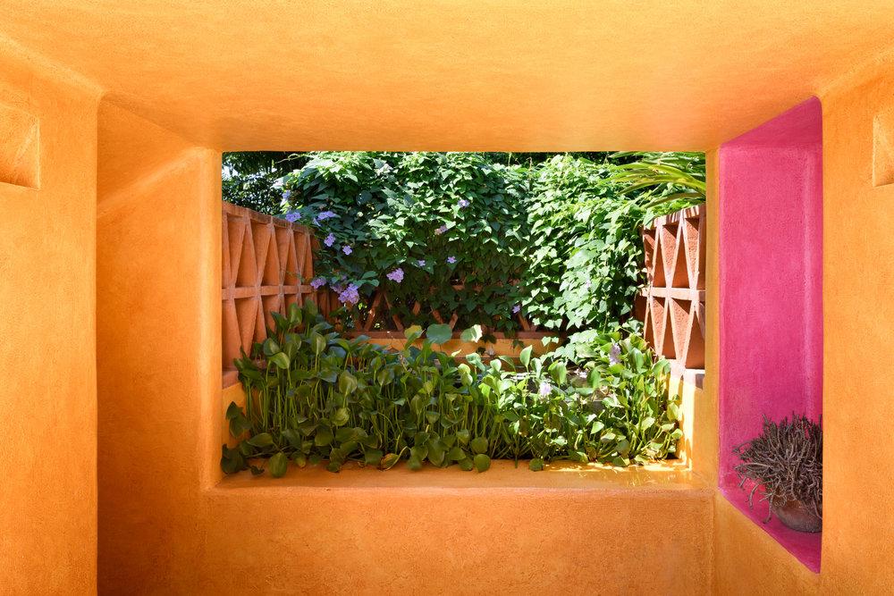 31-Garden.jpg
