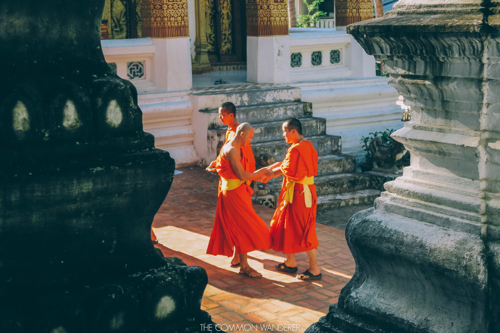 Monks joking around in Luang Prabang Laos