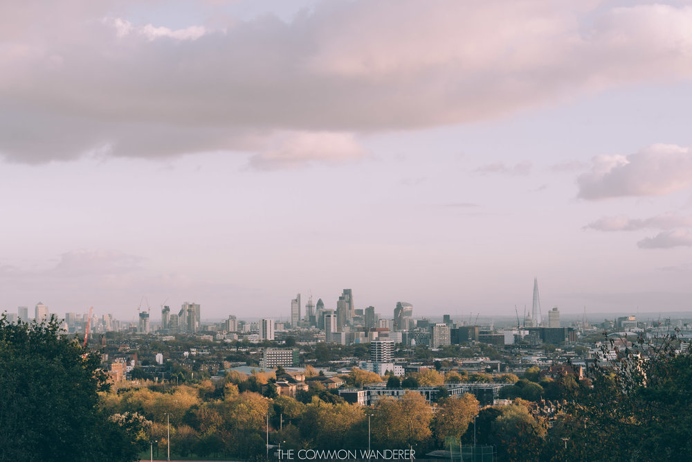 The London skyline from Hampstead Heath - The Common Wanderer