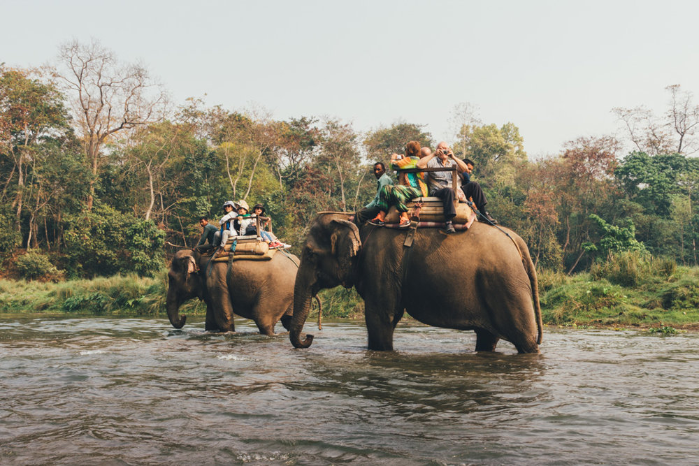 tourists riding an elephant in Chitwan national park