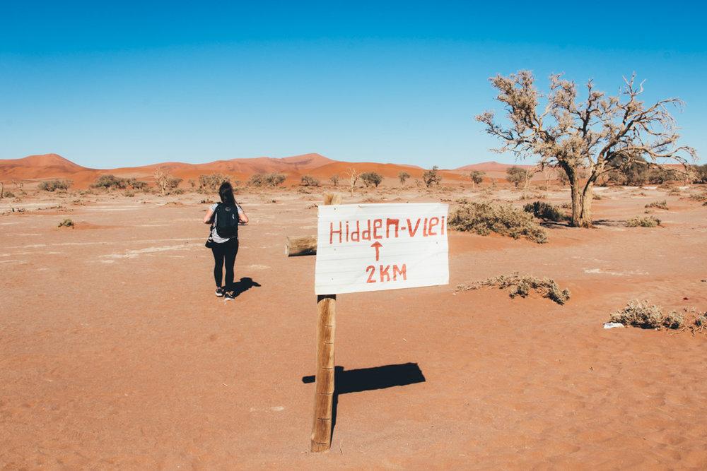 on our way to Hiddenvlei Sossusvlei Namibia