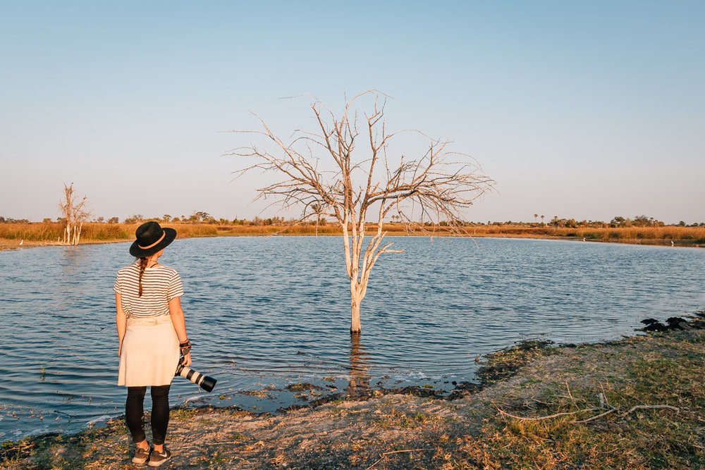 Okavango vs Chobe National park - Botswana things to do