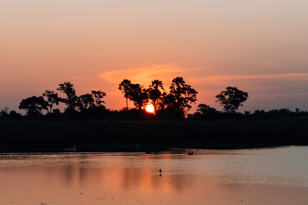 Botswana things to do - chobe vs okavango delta