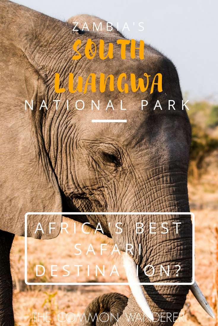 For scenery, variety and density of animals, there really is no other park like South Luangwa National Park, one Africa's best safari destinations..png