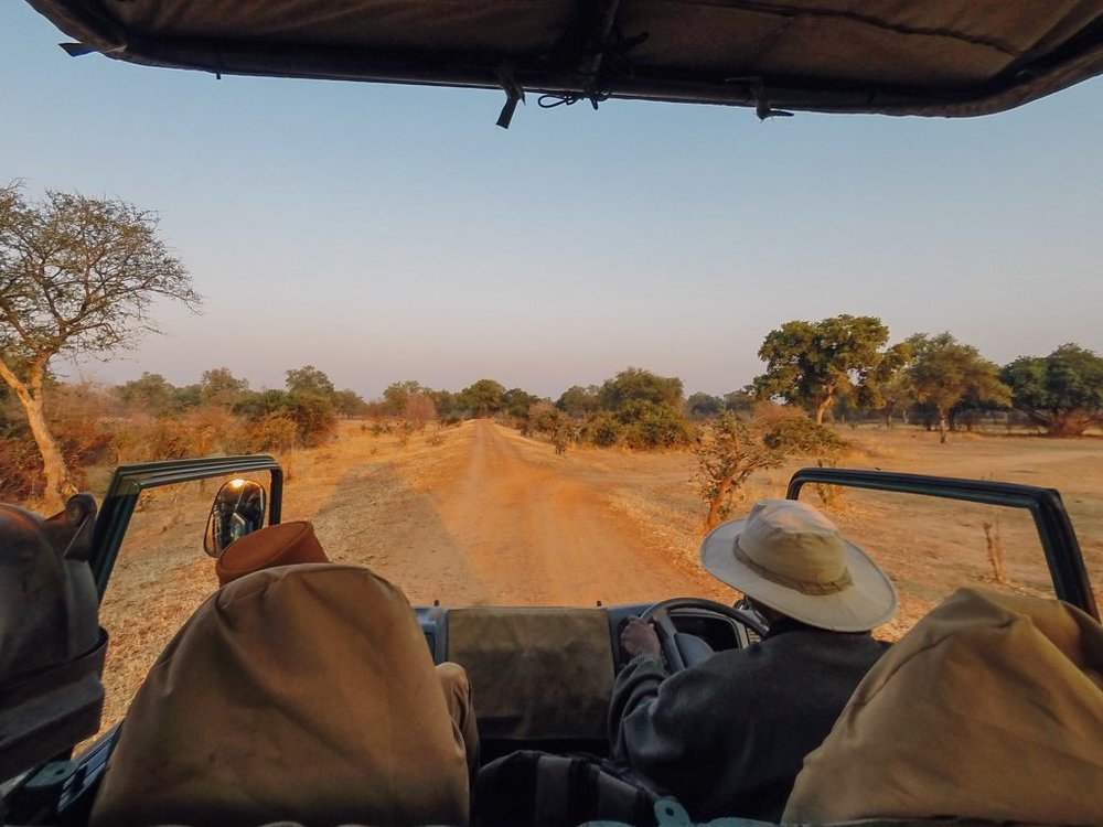 On safari in South Luangwa National Park