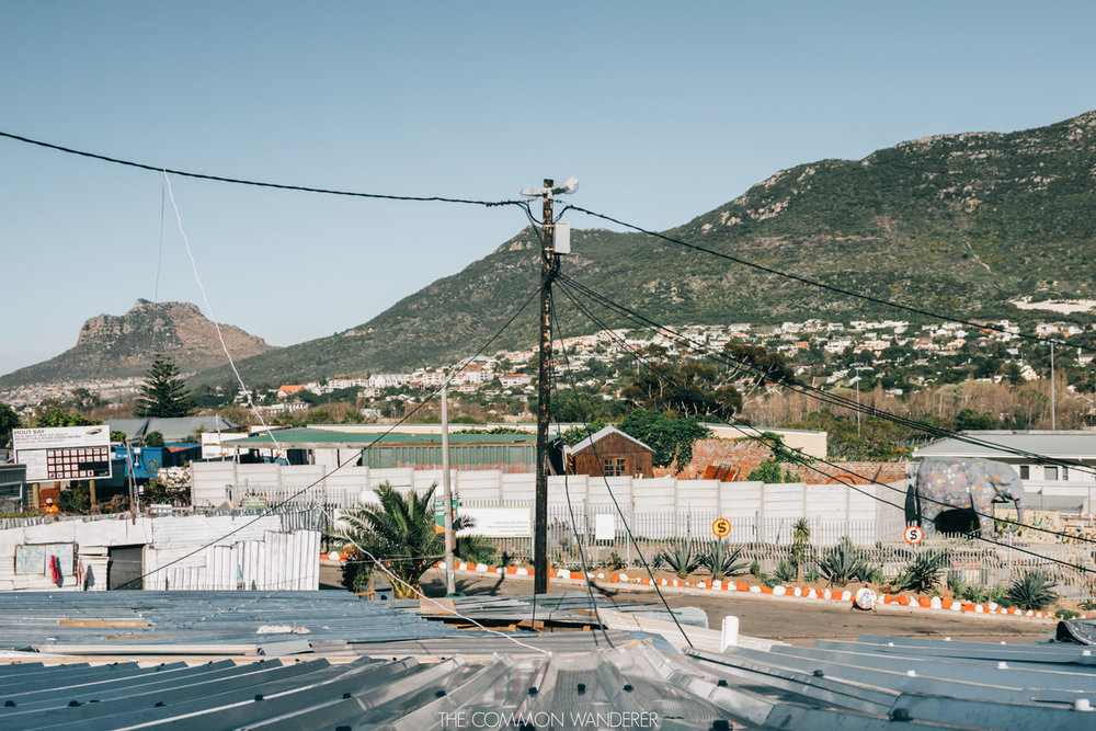 The Common Wanderer - Imizamo Yethu township in Cape Town, South Africa