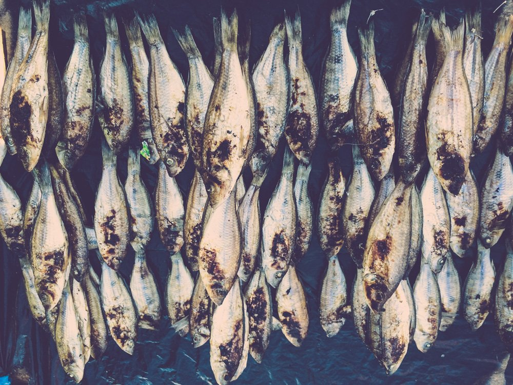 Fish in Nkhata Bay markets