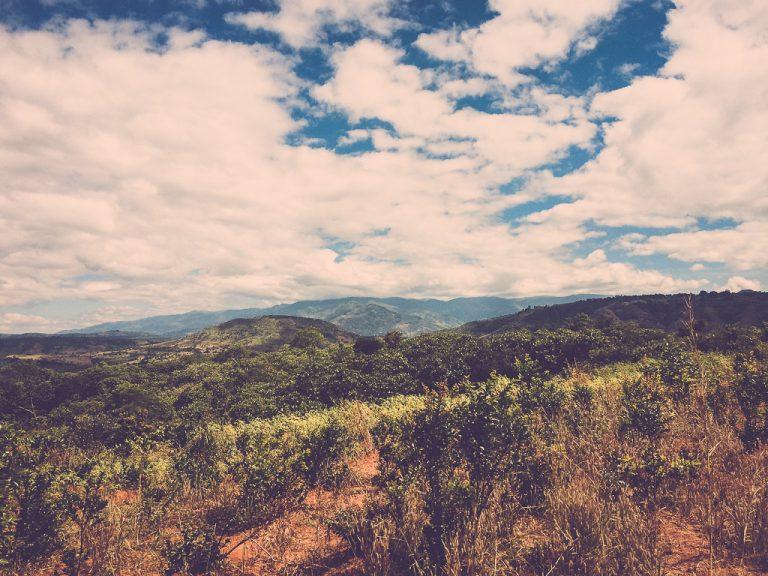 Malawi-17-768x576.jpg
