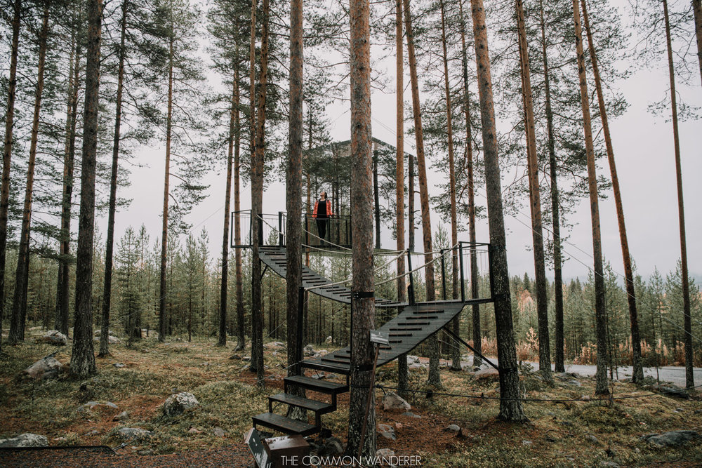 Swedish Lapland things to do - Treehotel