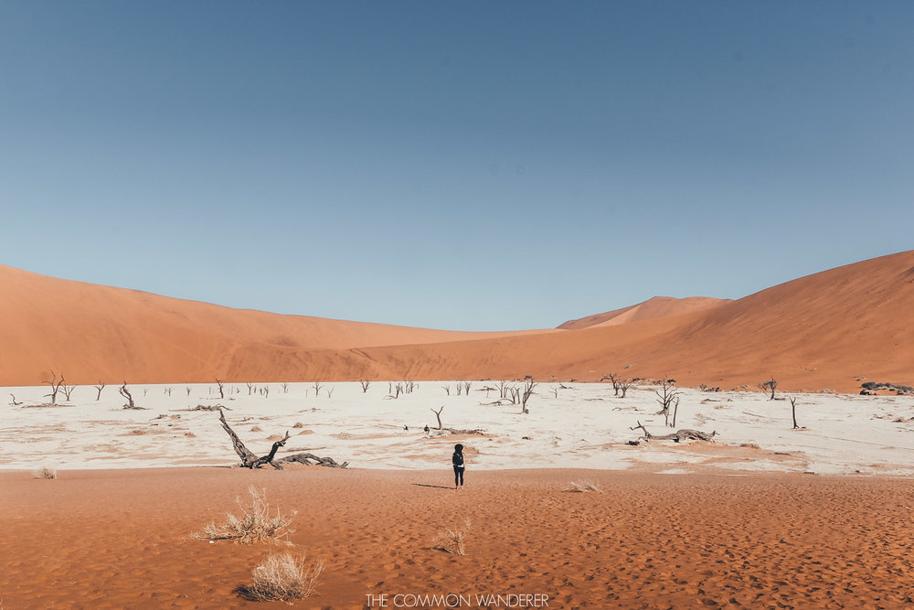 Our ultimate Namibia travel guide