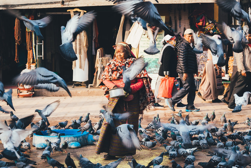 A woman feeds birds in Boudhanath Stupa, Kathmandu