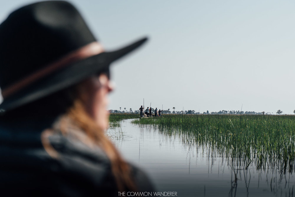 Mokoro ride in the Okavango Delta, Botswana - the Common Wanderer