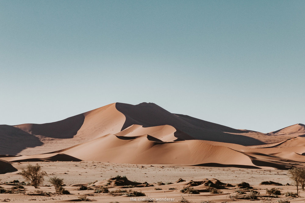 Shadows fall on the dunes of Sossusvlei, Namibia