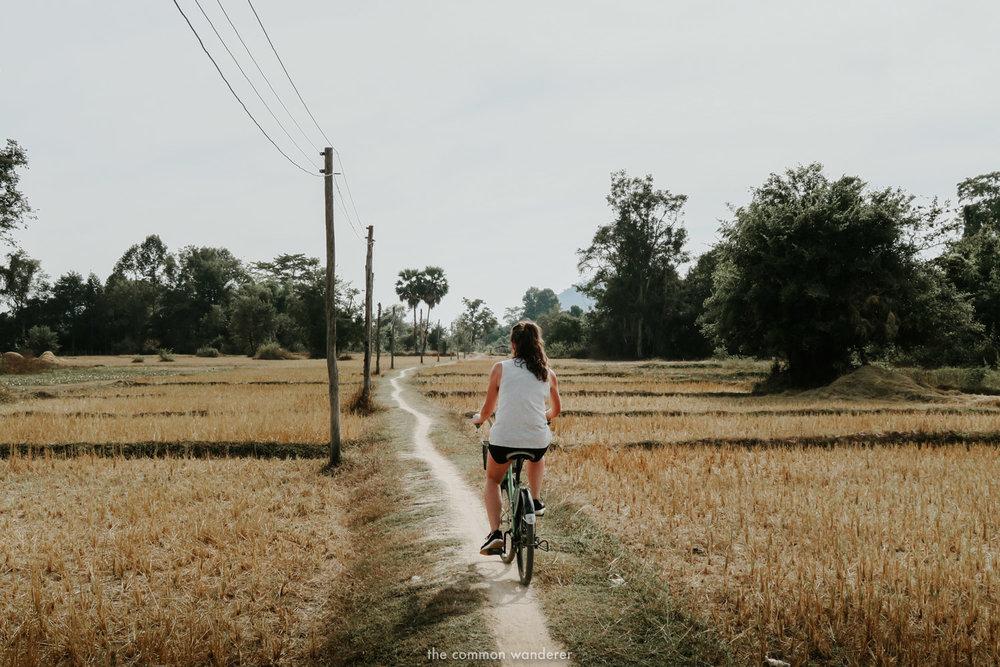 cycling through rice paddies in Don Det, Laos