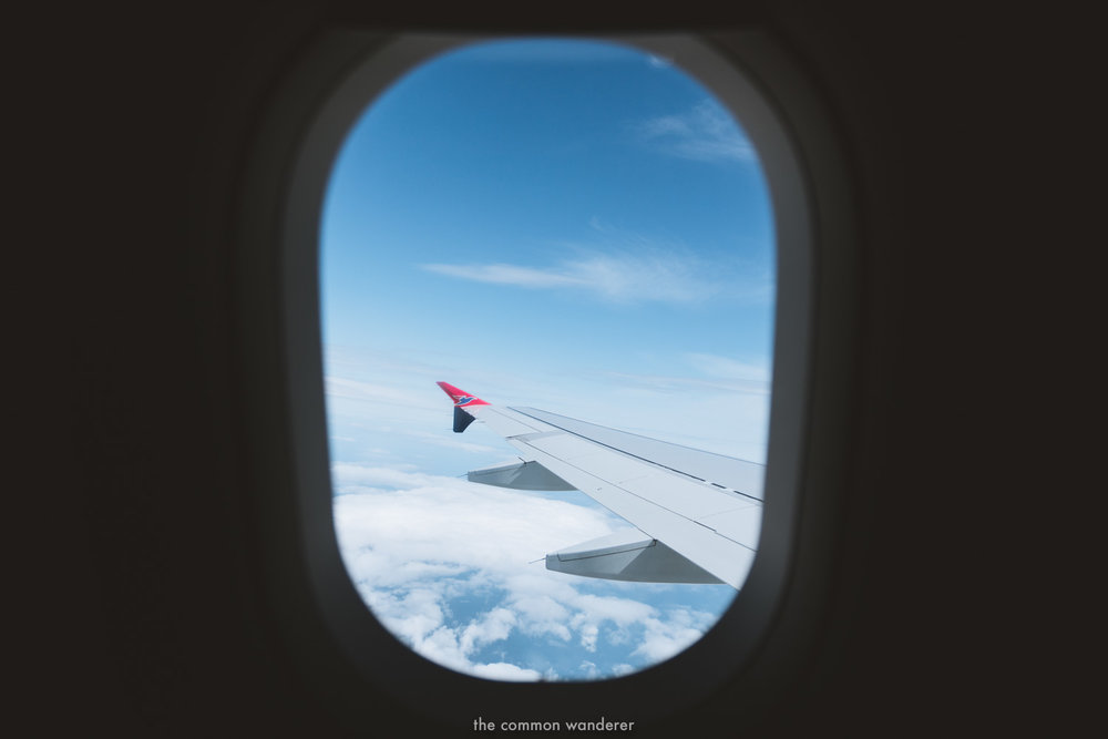 The Common Wanderer_- looking out plane window.jpg