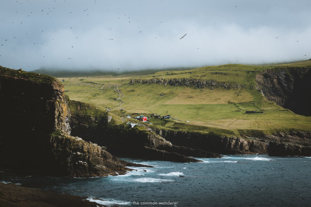 The Common Wanderer_- Mykines town Faroe Islands.jpg