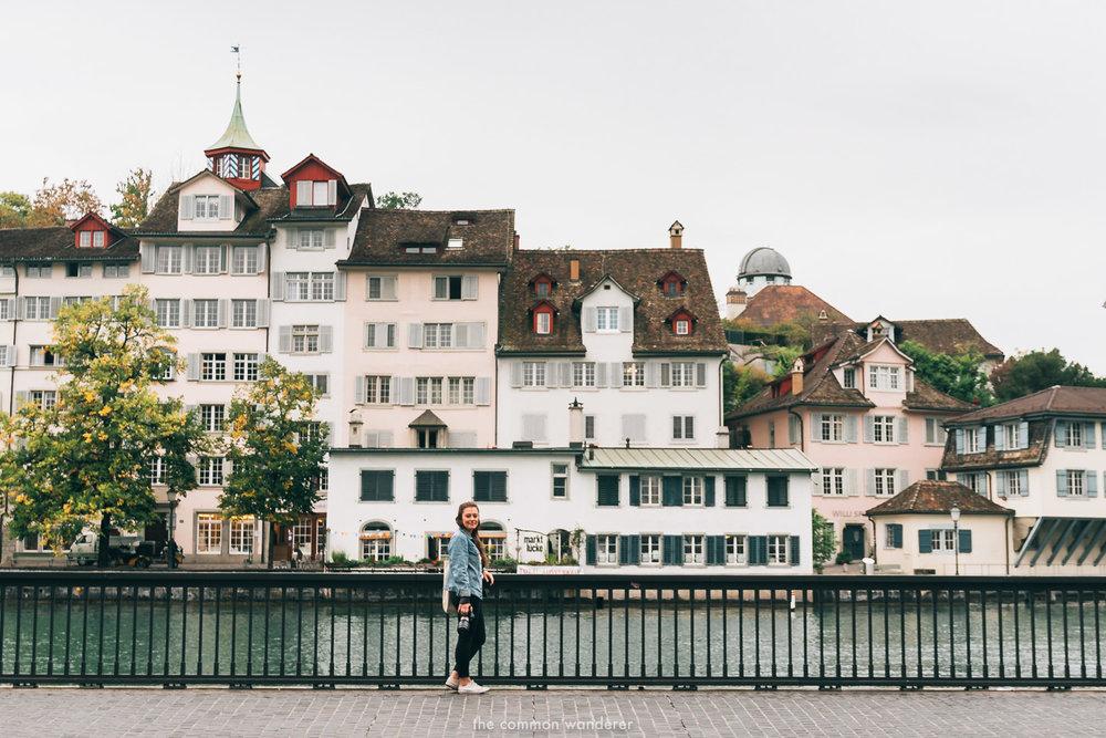 The Common Wanderer_- overlooking Lindenhof hill, Zurich.jpg