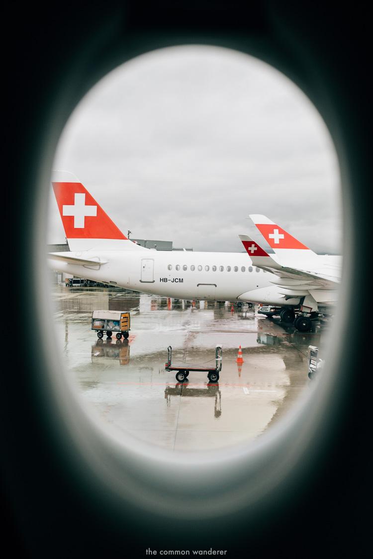 The Common Wanderer_- Swiss Air.jpg