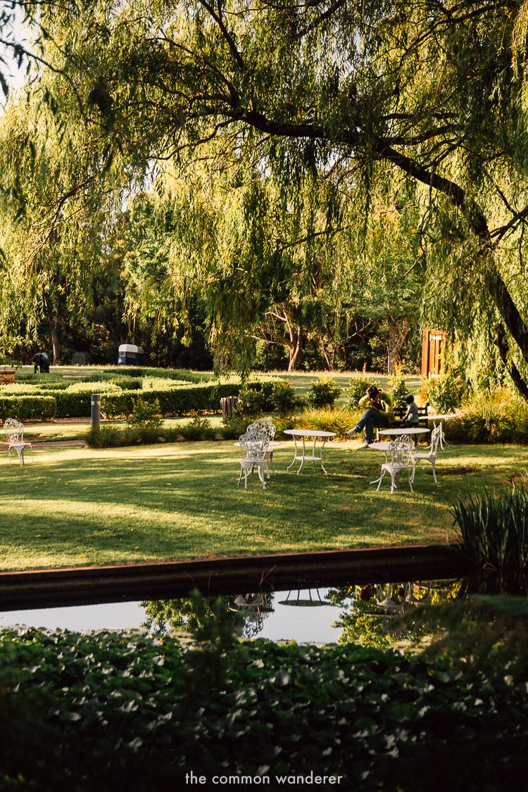 Gardens of Fairmont resort Blue Mountains