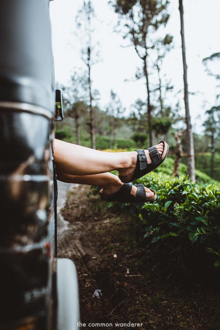 On the way to Diyaluma Falls | Diyaluma Falls guide