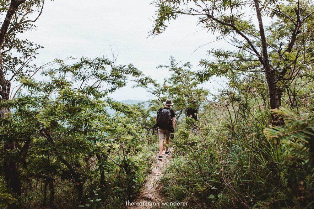 Hiking down to Diyaluma Falls | Diyaluma Falls guide