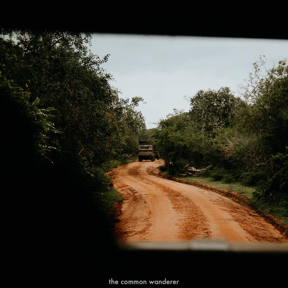Sri Lanka Itinerary   Yala National Park