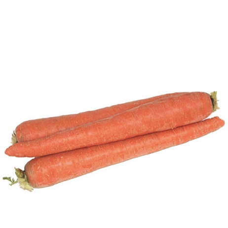 Product of the Week⇣ 14% - This week jumbo carrot prices fell across all our suppliers. This comes at a great time, with American Thanksgiving right around the corner.Take advantage of the price drop!