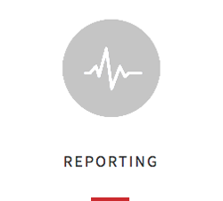 Reporting Icon.png
