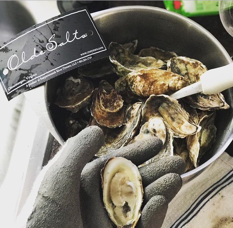 OLDE SALTS OYSTERS   The truest taste of the ocean Olde Salts bring together a bold seaside brightness from Chincoteague, Vigrginia    Salinity ; Heavy Salt