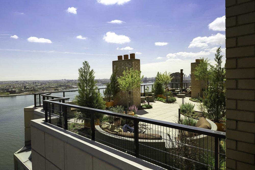 rooftop2.jpg