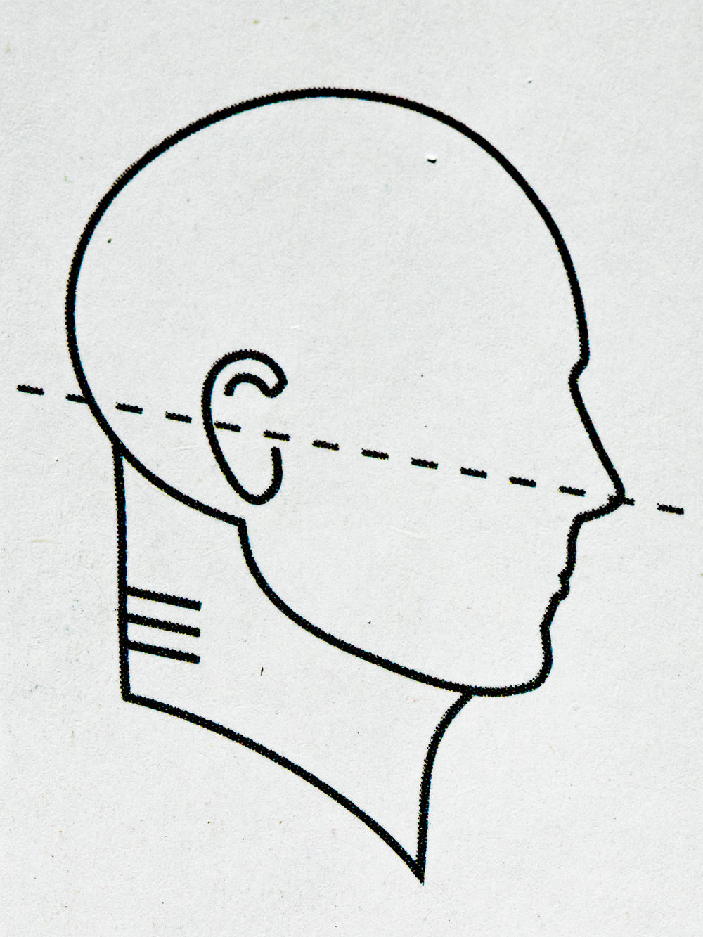 Ideal neck posture, according to Ester Gokhale