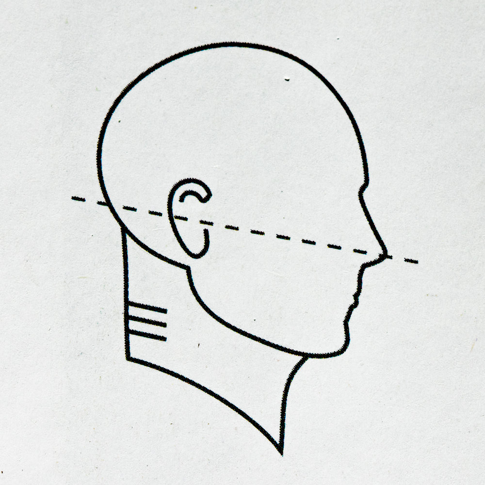 """""""Elongated,"""" healthy neck"""