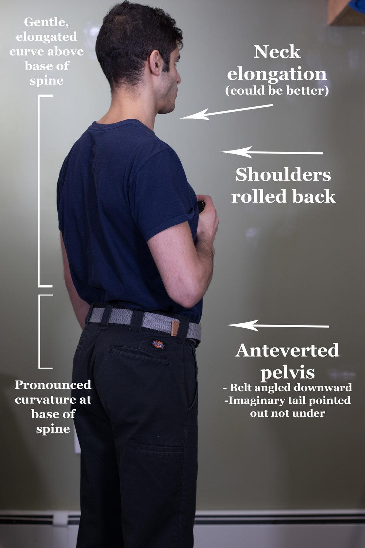 Primal Posture Rear View
