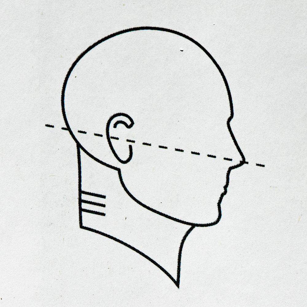 "Gokhale's ""ideal,"" ""elongated"" neck posture"