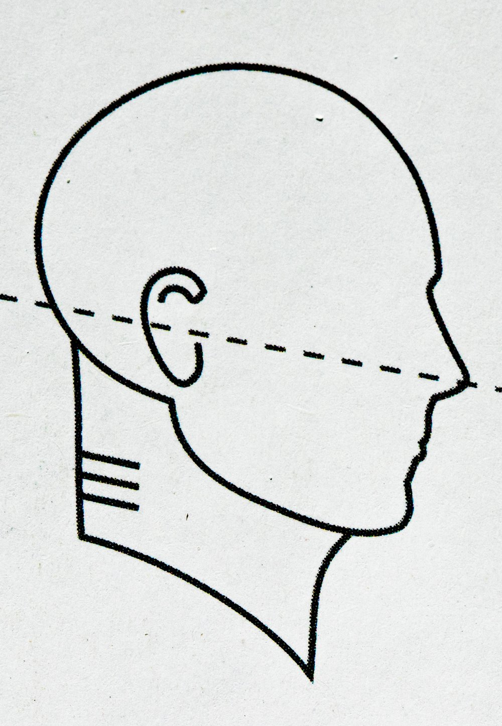 "Gokhale's ""Ideal, elongated neck posture"""