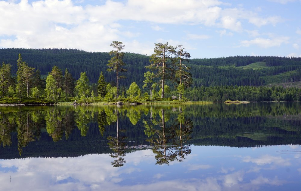 Lake Vesleflåtan at Krokskogen (Photo: VisitOslo/Tord Baklund))