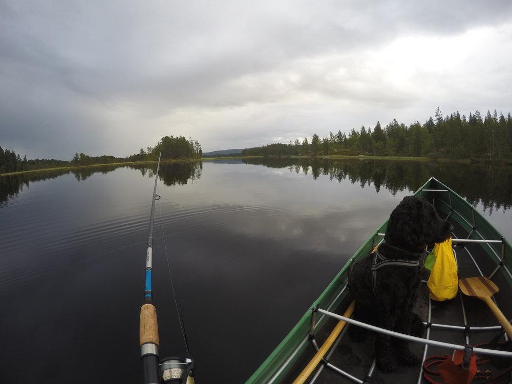 Fishing in Haukfjorden.