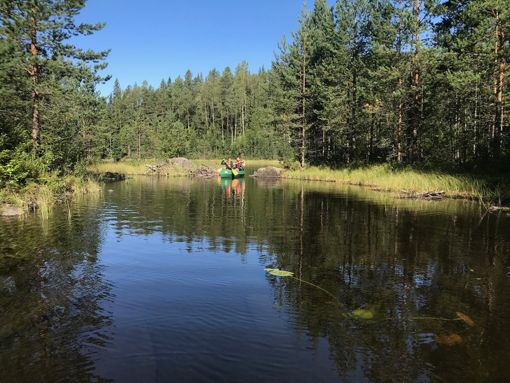 Away from thew crowds but close to the capital. Genuine wilderness in Østmarka (Photo: Oslo Outdoor)