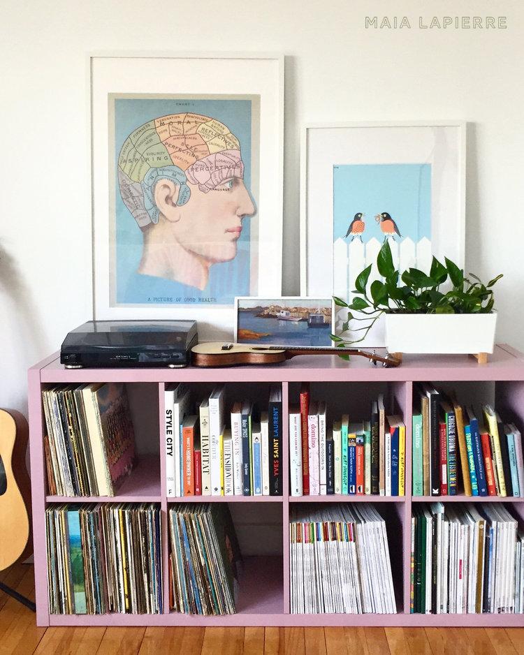 Maia LaPierre Painted Kallax Bookshelf