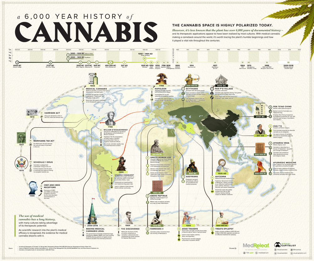 6000 year history of cannabis.jpg