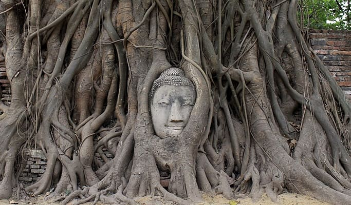 ayutthaya-wat-mahathat-bcv.jpg