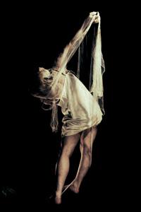 想像の対象は それを具体化した時点で幻想ではなくなる そしてそれが現実として捕らえた瞬間 束の間の安堵を新たな懐疑心が埋めて行く