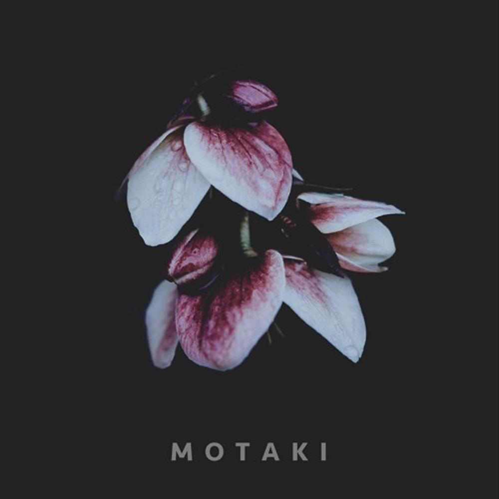 motaki.png