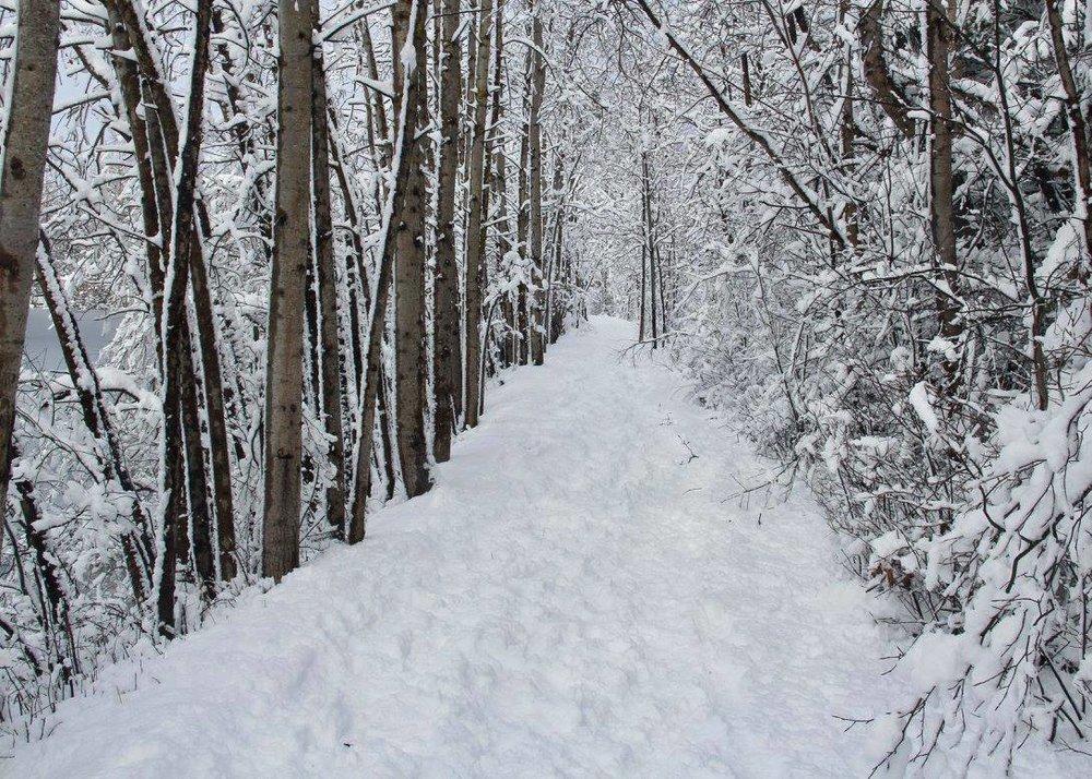 Snowy path around Reservoir Park