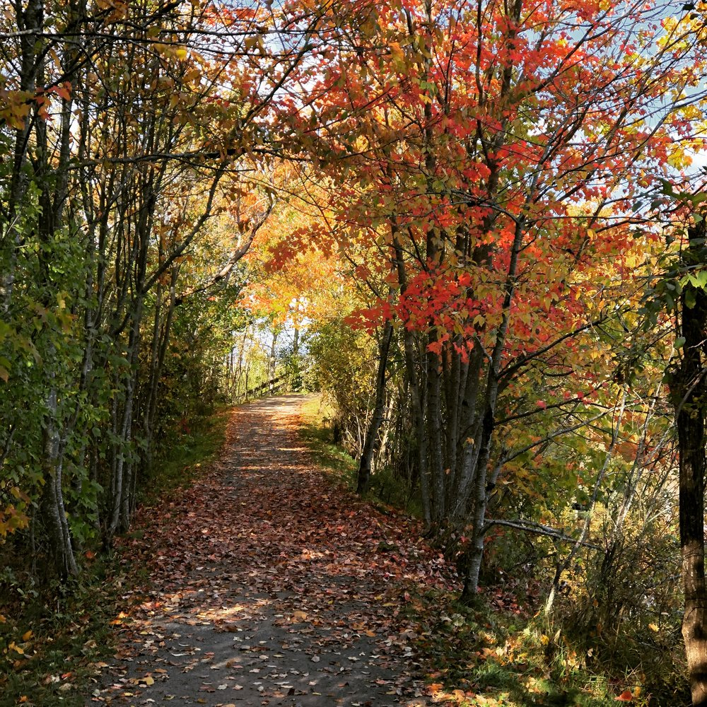 fall hiking.JPG