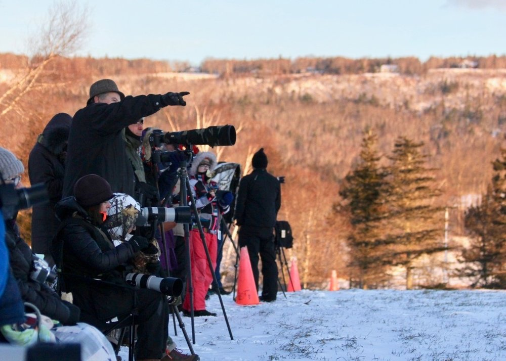 Photographers line up at Eagle Watch