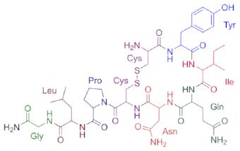 Oxytocin - the love hormone!