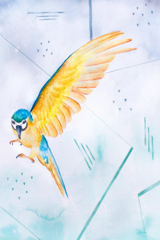 Parrot, 2015
