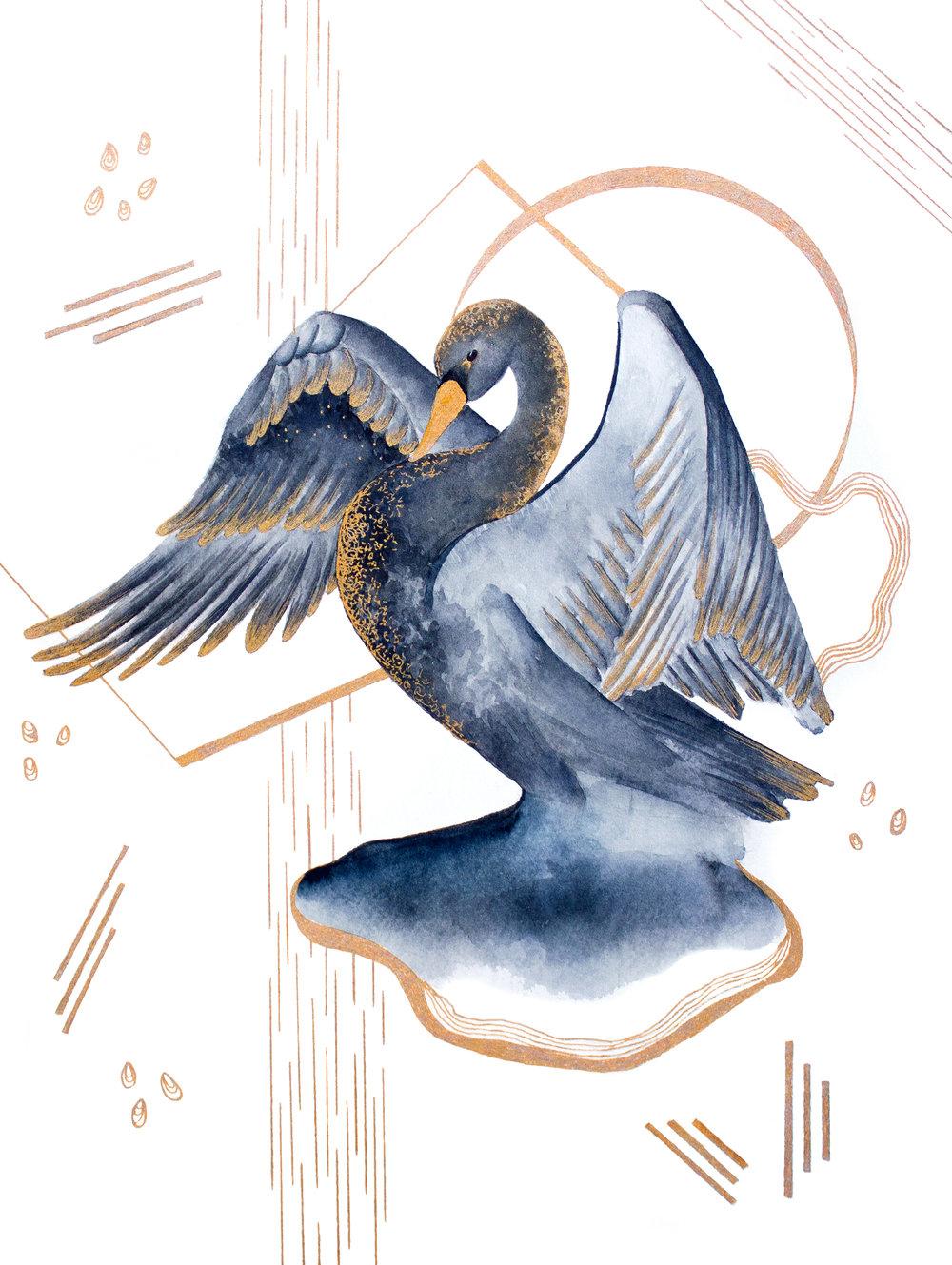Swan, 2015